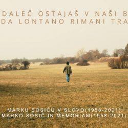 Marko Sosič grade timeline.00_54_24_17.Still006(2)