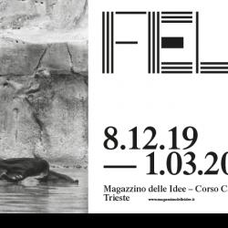 La dolce vita, Marcello Mastroianni e Anita Ekberg nella fontana di Trevi, 1959 ©Pierluigi Praturlon / Reporters Asscociati & Archivi
